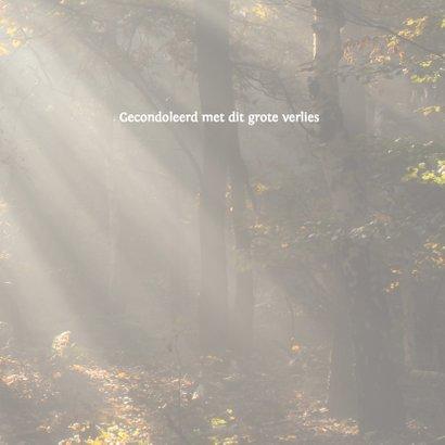 Condoleance zonneharp kleur 3