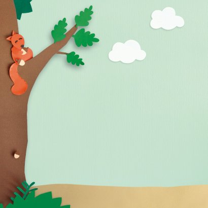 Dieren in het bos felicitatiekaart 2