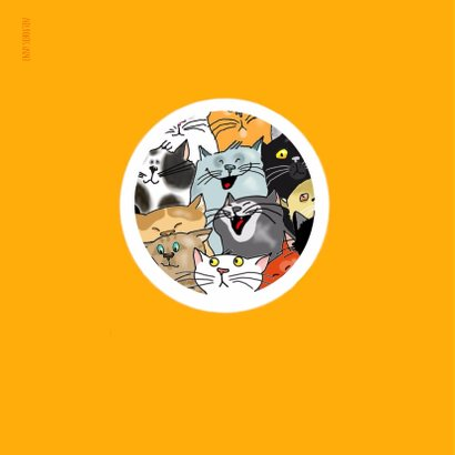 Dieren-  katteneenheleboel 2