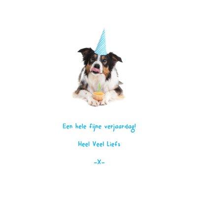 Dieren Verjaardagskaart - Hap-py Birthday 3
