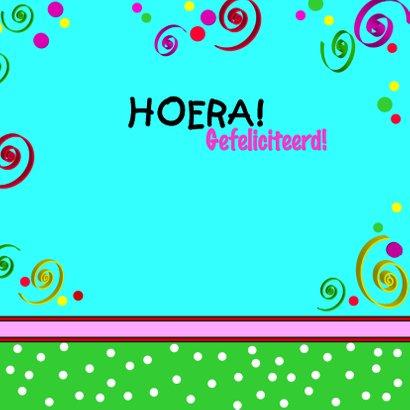 Feestvarken HOERA 3