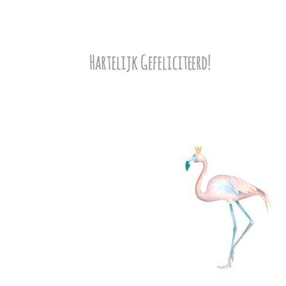 Felicitatie flamingo jongen 3