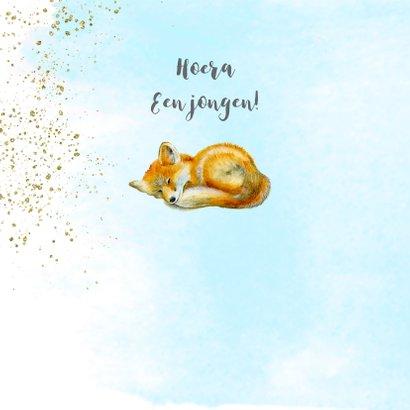 Felicitatie geboorte vosje jongen 2
