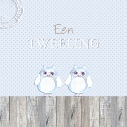 felicitatie tweeling uiltjes 2