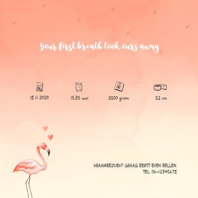 Flamingo geboortekaartje koraal 2