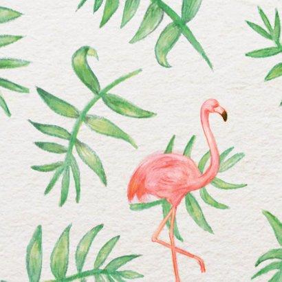 Flamingo Party - KO 2
