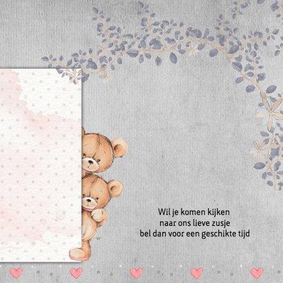 Geboorte beer, zusje, 3e kindje 2