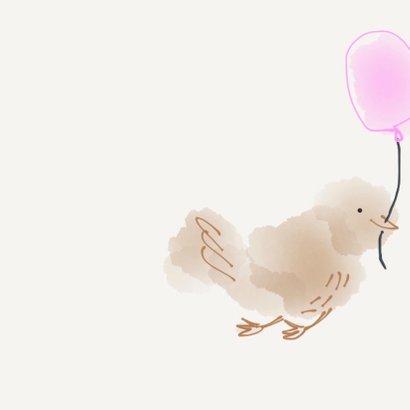 Geboorte Meisje Vier Vogeltjes 2