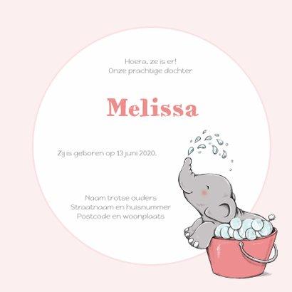 Geboorte olifant bubbelbad - IH 3