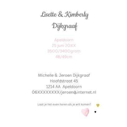 Geboorte tweeling label veertjes 3