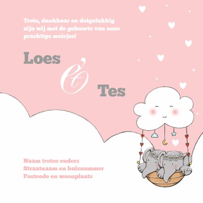 Geboorte tweeling Loes en Tes IH 3