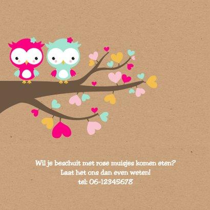 Geboorte - Tweeling uiltjes in boom 2