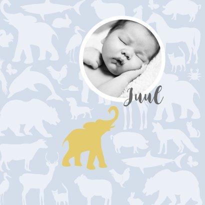 Geboortekaart Animal tikje retro stoere kleuren 2