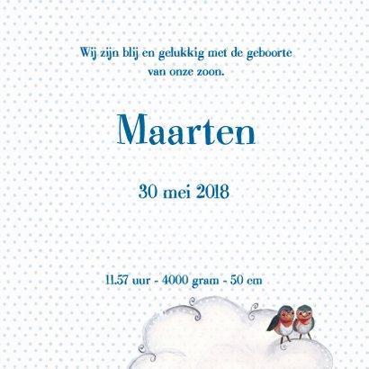 Geboortekaart Jongen & Ooievaar Cartita 3