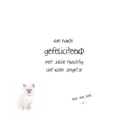 Geboortekaart - Kitten It's a boy 3