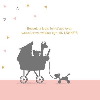Geboortekaart meisje met kinderwagen av 2