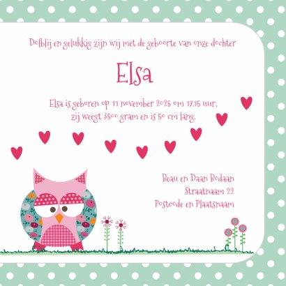 Geboortekaart uiltje Elsa 3