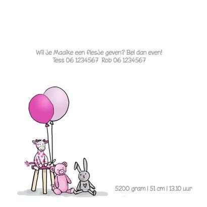 Geboortekaart zusje kinderwagen  2