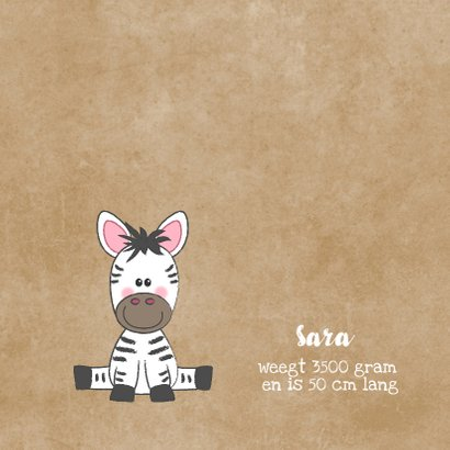 Geboortekaartje broertje of zusje met schattige zebra's  2