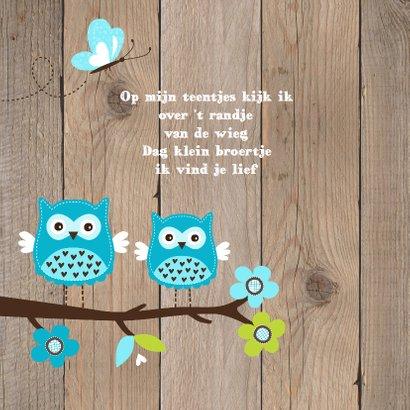 Geboortekaartje broertje uiltjes houtlook 2