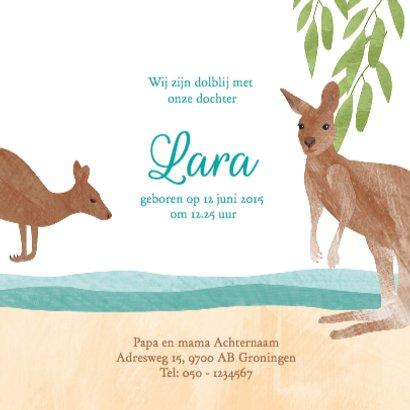 Geboortekaartje koala kangoeroe 3