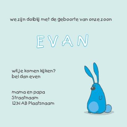 Geboortekaartje konijntjes blauw 3