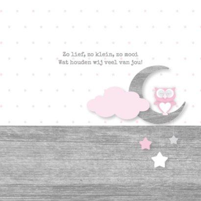 Geboortekaartje uiltje maan en sterren roze 2