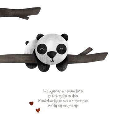 Geboortekaartje panda met takjes lief 2