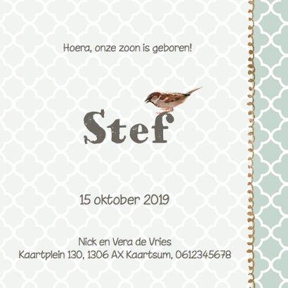 Geboortekaartje Stef mint groen hout- LO 3