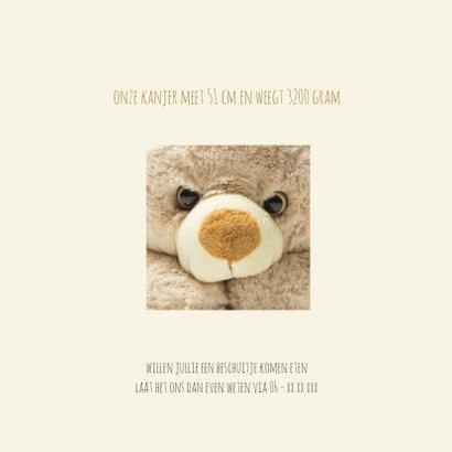 geboortekaartje teddybeer 2