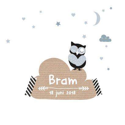 Geboortekaartje wolkjes uil Bram 3