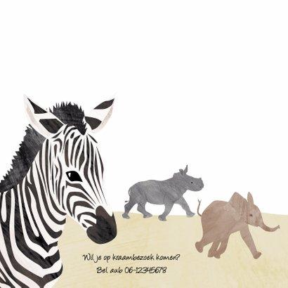 Geboortekaartje zebra Afrika 2