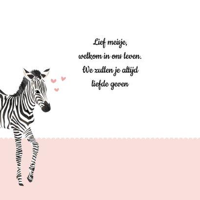 Geboortekaartje zebra lief 2