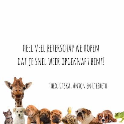 Heal the world dierenkaart-isf 3