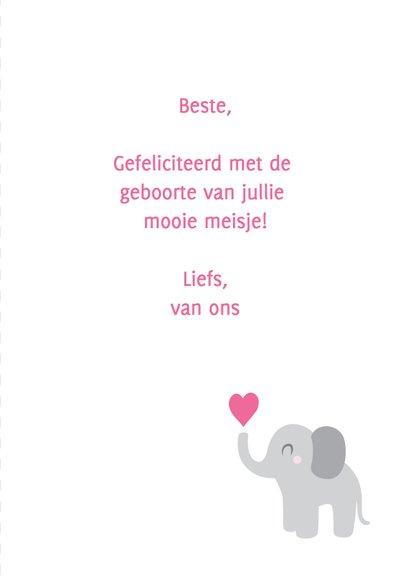 Hoera een meisje, olifantje 3