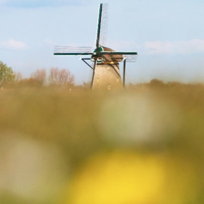 Hollands landschap met molen 2