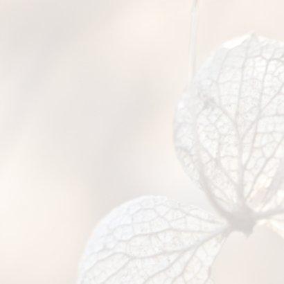 Hortensiabloem in kader 2