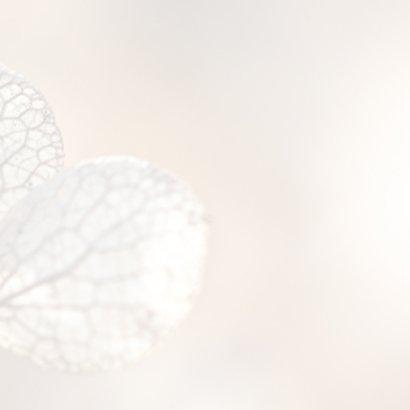 Hortensiabloem in kader 3