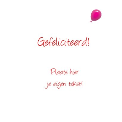 Kabouter Feest 3