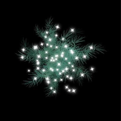 Kerstkaart met grote witte ster met dennetakjes 2