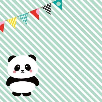 Kinderfeestje panda 2
