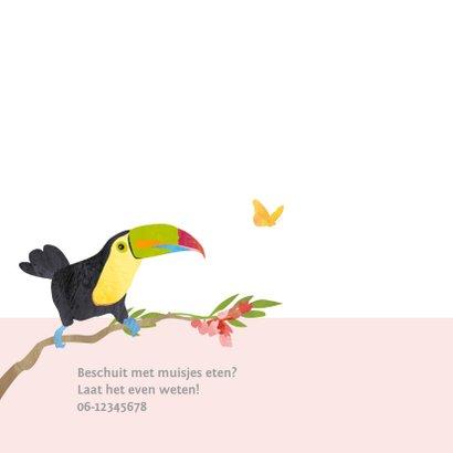 Kleurrijk geboortekaartje vogels 2