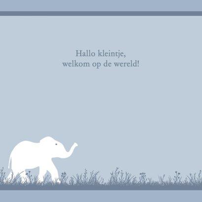 Leuk geboortekaartje met olifantje voor zoon 2