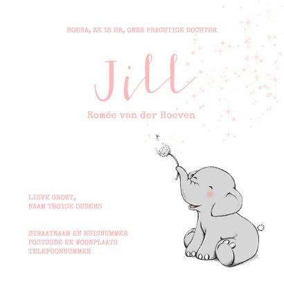 Lief geboortekaartje meisje met olifantje en wensbloem 3