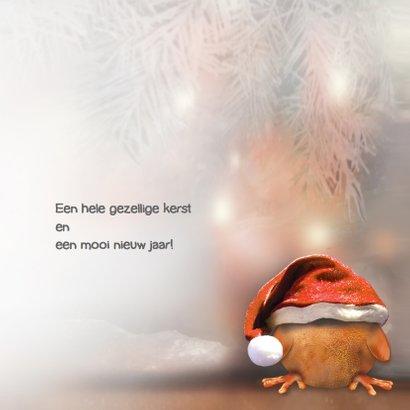 Ptie Foe met kerstlampjes 3