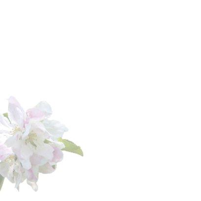 Rouwkaart sfeervolle bloemen 2