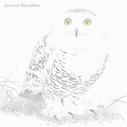 Sneeuwuil (vrouwtje) 2