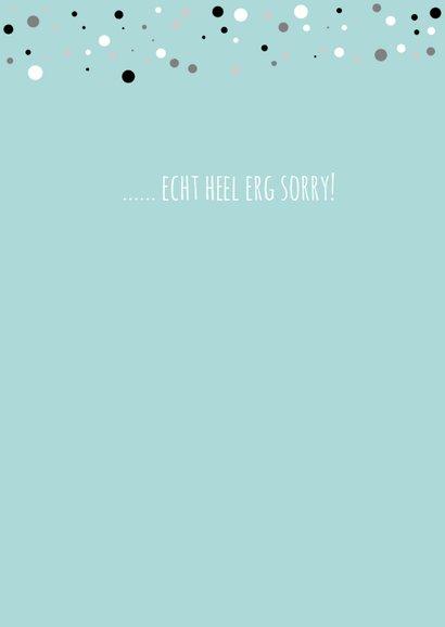Sorrykaartje-  het spijt me  3