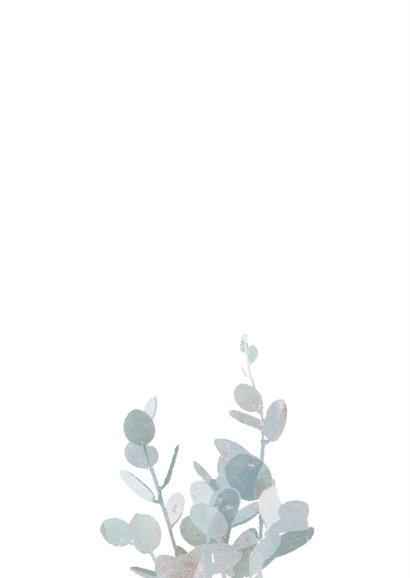 Sterkte kaart met eucalyptustak 2