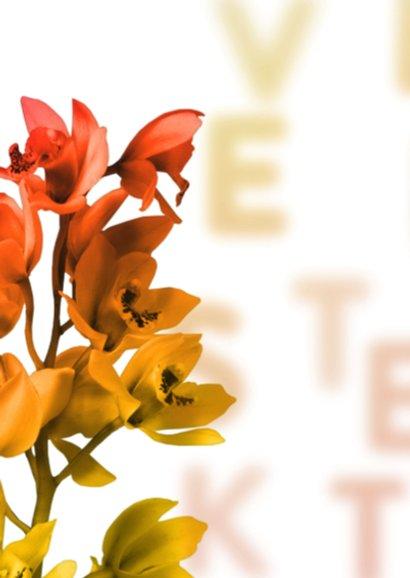 Veel sterkte oranje pt 2